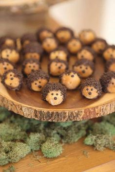 Hedgehog Donut Holes. These are easy to make with donut holes, chocolate, and sprinkles.