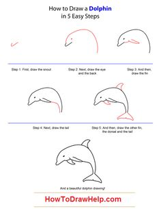 http://howtodrawhelp.com/wp-content/uploads/2013/03/how-to-draw-a-dolphin-step-by-step.png