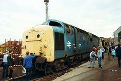55016 (ex D9016) 'Gordon Highlander' at Doncaster Works on 28th July 1984. (Paul Wormstone)