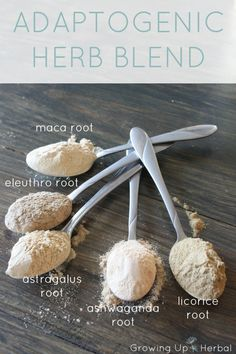 Boost Your Child's Body With This Adaptogenic Herb Blend | GrowingUpHerbal.com - help your child deal with sickness and stress with this DIY adaptogenic herb blend. It tastes great!