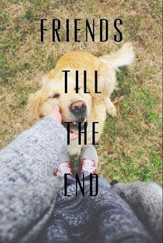 Till the End!