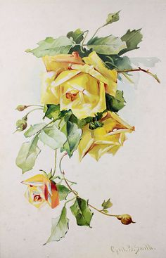 Vintage Home - Stunning Yellow Roses Painting After Klein.