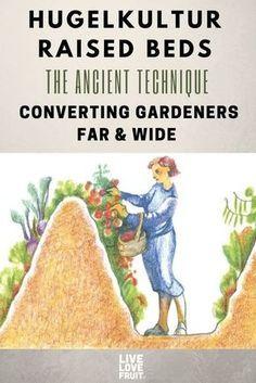 Organic Vegetables, Growing Vegetables, Gardening Vegetables, Growing Tomatoes, Garden Tomatoes, Container Vegetables, Veggies, Raised Garden Beds, Raised Beds