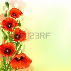 Картинки по запросу hibiscus poppy frangipani iris