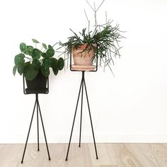 ferm LIVING Plant Stands are available in two sizes and more contemporary colours: http://www.fermliving.com/webshop/shop/green-living.aspx
