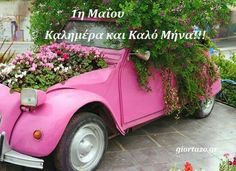 """You know, rusty junk that someone was going to fix up. They weren't pink or pretty in any way.""""yard art"""" for years. Glamour, Abandoned Cars, Everything Pink, Color Stories, Flower Pictures, Car Photos, Floral Bouquets, Old Cars, Rose"""
