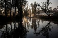 Xochimilco, un vestigio de la vida precolombina MEXICO AMERICA NORTE