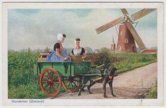 POSTCARD - Hondenkar (Zeeland), Netherlands dog pulling women in cart, windmill