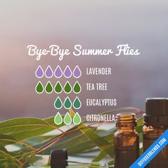 Bye-Bye Summer Flies — Insect Repellent Spray, Body Oil, Roller Bottle or Diffuser Essential Oil Blend Citronella Essential Oil, Helichrysum Essential Oil, Essential Oil Spray, Doterra Essential Oils, Essential Oil Diffuser, Essential Oil Blends, Bye Bye, Cedarwood Oil, Diffuser Recipes