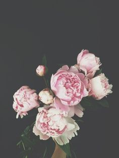 I like the pink peonies with the grey background.