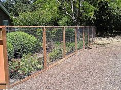 Keep the deer out this summer with an A & J deer fence.