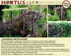 Hortus Insectorum 1A Naturgarten - Mini Tipps