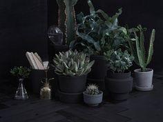 Tuunaa terrakottaruukut Yki-sokkelimaalin avulla: 1. harjaa ruukkujen pinnasta irtolika tai pese vanhojen ruukkujen pinta huolella. Kuivata pinnat hyvin. 2. Maalaa 1-2 kertaa. Parhaan lopputuloksen saat telalla. Yki-sokkelimaali antaa karhean mattapinnan ja tekee ruukuista säänkestäviä.
