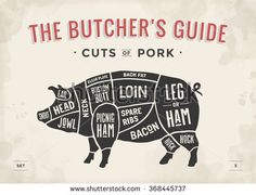 Cut of meat set. Poster Butcher diagram, scheme and guide - Pork. Vintage typographic hand-drawn. Vector illustration - stock vector