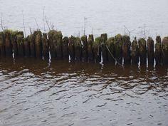 zuidlaarder meer