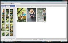 picasa how to