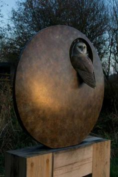 Bronze Garden sculpture by artist Simon Gudgeon titled: Barn Owl (bronze nesting sculpture lifesize)