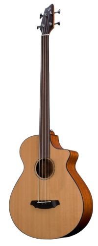 breedlove acoustic bass  I don't have one. But I might sometime.
