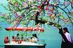 Springtime on West Lake