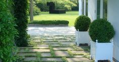 pathstones with groundcover