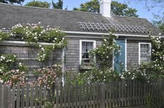 nantucket cottages covered with roses