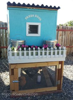 Pretty Chicken Coop with White Picket Fence