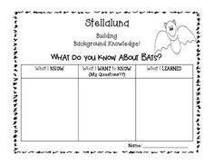 STELLALUNA COMPREHENSION FREEBIE!! {CHARACTER, SETTING, PROBLEM, SOLUTION} - TeachersPayTeachers.com