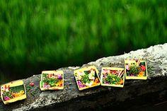 canang sari by Farl