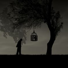 "500px / Photo ""Alone"" by Hossein Zare"