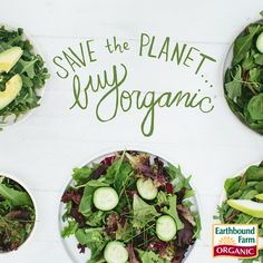 We LOVE organic! Many are working hard to bring organic healthy food. No synthetic pesticides or fertilizers in organic farming. Organic Farming, Organic Gardening, Green Tips, Food System, Sustainable Food, Save The Planet, Gardening For Beginners, Pest Control, Healthy Recipes