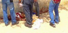 JORNAL O RESUMO - BOLETINS POLICIAIS DIÁRIOS COM FOTOS JORNAL O RESUMO: Cinco assassinatos no final de semana, 2 em Cabo F...