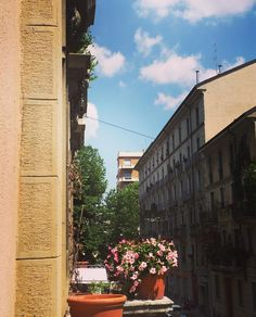 Terrazzino personale  #Milano #milanocity #milanodavedere #view #panorama #landscape #balcony #balconyview #sunny #flowers #colorful #may #spring #palace #architecture #street #streetphotography #igers_milano #ig_milan #office #lunchtime #lunchbreak #sky #clouds #arcodellapace by xeniagea
