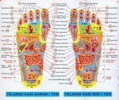 Akupunktur kaki, gambar dan teks karya ASLI OEI GIN DJING, Akupunkturis | Oei Gin Djing, Akupunkturis
