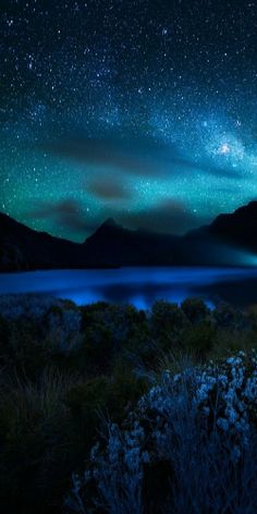 ~ mystic night ~ Alone In The Dark, Sky Night, Starry Night Sky, Night Sky Tumblr, Night Clouds, Stars At Night, Pretty Sky, Beautiful Sky, Beautiful Landscapes