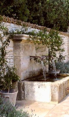 69 Modern Mediterranean Backyard Makeover On A Budget - Garten İdeen Garden Pool, Water Garden, Tropical Garden, Landscape Design, Garden Design, House Landscape, Water Walls, Garden Fountains, Wall Fountains