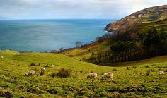 Murlough Bay, Northern Ireland