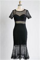 Black Net Dress Fetish Style