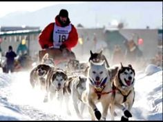 "Iditarod - Known as ""The Last Great Race on Earth,"" the Iditarod, in its 37th running, asks competitors to race over 1,110 miles through the middle of Alaska's winter, where they face ""jagged mountain ranges, frozen river, dense forest, desolate tundra and miles of windswept coast."" Don't forget that the wind chill is often well below freezing"