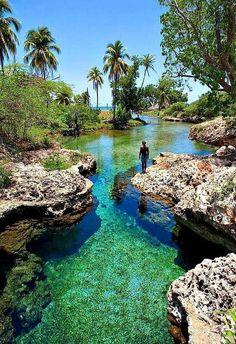 Rio Gut, Jamaica. - flor de dalia xiu - Google+
