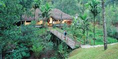 Shalimar Spice Garden / Thekkady, Kerala, India