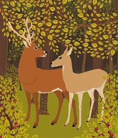 Cute deer and doe lost in woods.