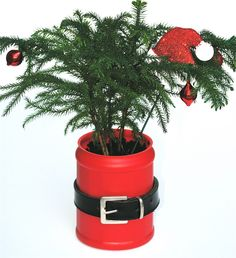 How cute! A #Santa plant. Simply paint a plastic coffee can red and dress up with a belt. Cute!