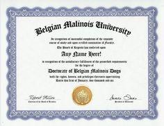 Belgian Malinois Degree: Custom Gag Diploma Doctorate Certificate (Funny Customized Joke Gift - Novelty Item)