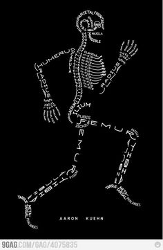 For a med student, this makes Anatomy a tad bit fun :)