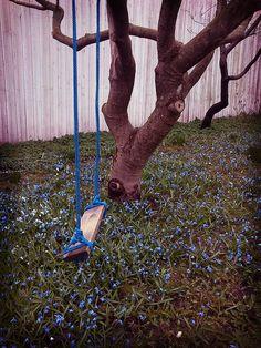 Swing in the garden tree, by bards.portfolio, via Flickr