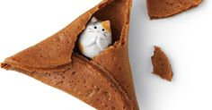 One company decided it was finally time to modernize the classic, and introduce a new treasure to the cookie middle. A cat.