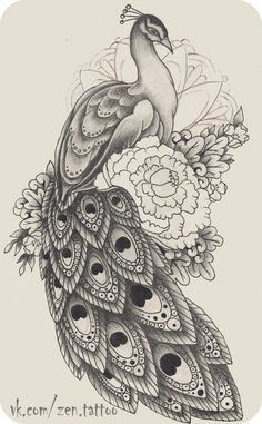 70 New Ideas Tattoo Thigh Tatoo Peacock Sketch, Peacock Drawing, Peacock Tattoo, Peacock Art, Peacock Colors, Pencil Art Drawings, Bird Drawings, Art Drawings Sketches, Animal Drawings