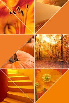 sape orange shweshwe moodboard - 700×1052