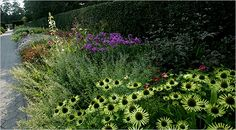 In The Garden - A Tapestry Of Color, Unfolding All Year - NYTimes.com