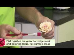 In this Craftsy blog post, learn two brushing techniques for creating realistic sugar flowers, taught by our instructor Nicholas Lodge. Watch the video here: http://www.craftsy.com/ext/20130203_14_Cake_Decorating_1b